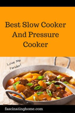 best slow cooker and pressure cooker