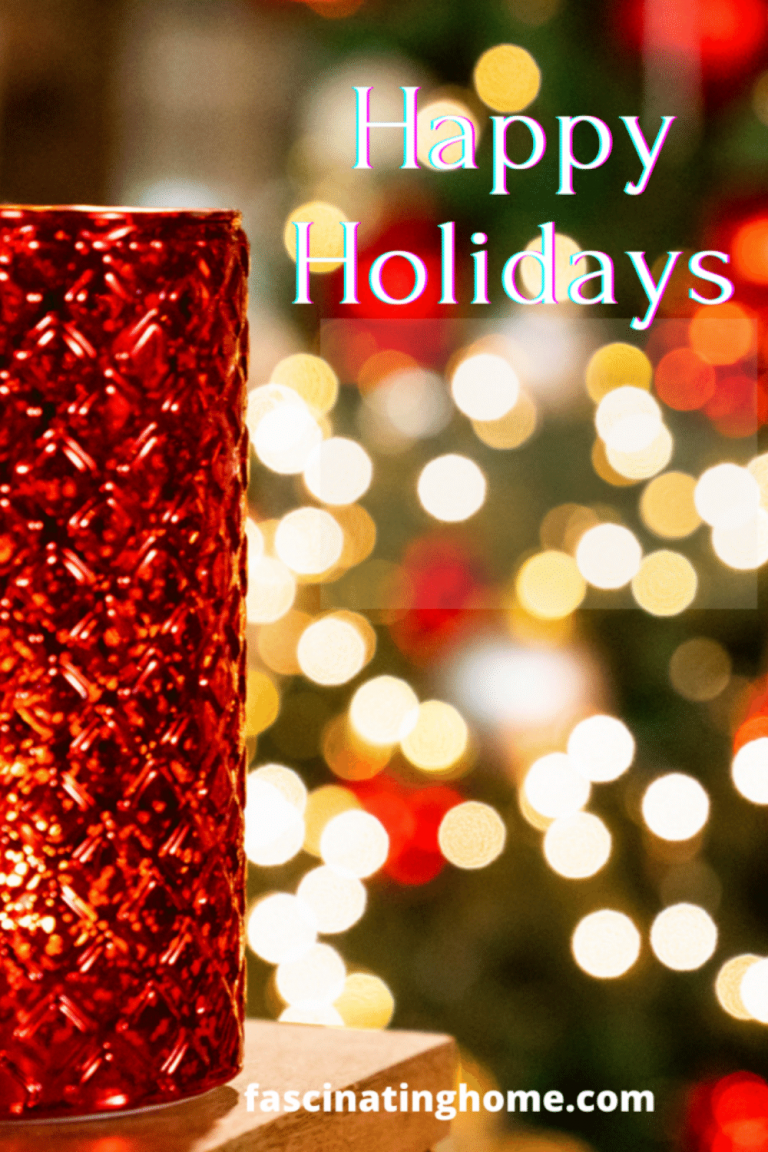 Fascinating Home Holiday Gift Guide Blog (2020)